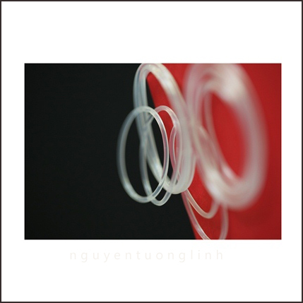 O-ring cao su viton