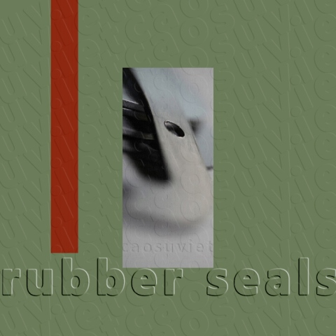 Rubber gasket | Rubber seals and photo